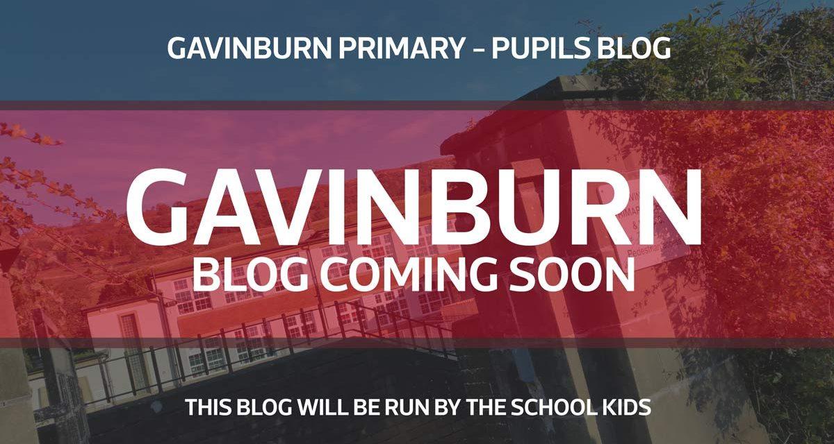 Gavinburn Primary – Pupils Blog – Coming Soon